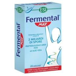 FERMENTAL MAX 20