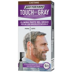 JUST FOR MEN TOUCH OF GRAY CASTANO 40