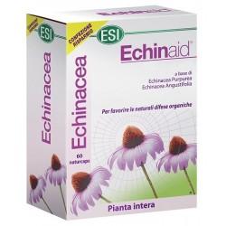 ECHINAID 60