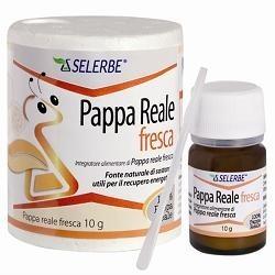 SELERBE PAPPA REALE FRESCA 10