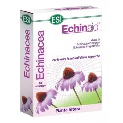 ECHINAID 30