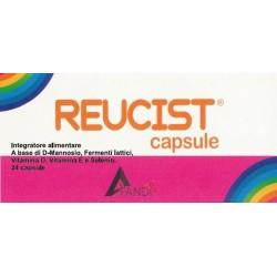REUCIST 24