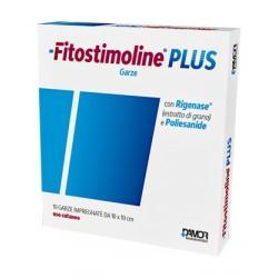 GARZA FITOSTIMOLINE PLUS 10 X 10