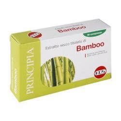 BAMBOO ESTRATTO SECCO 60