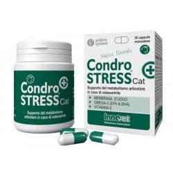 CONDROSTRESS + CAT 30 CAPSULE