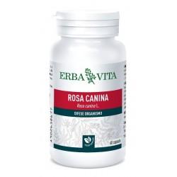 ROSA CANINA 60 CAPSULE 400