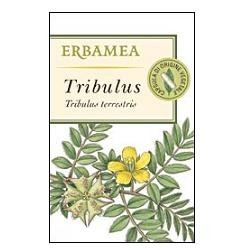 TRIBULUS 50 CAPSULE