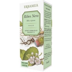 RIBES NERO 50