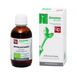 IPPOCASTANO MACERATO GLICERINATO BIO 50