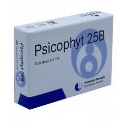 PSICOPHYT REMEDY 25B 4 TUBI 1,2