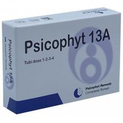 PSICOPHYT REMEDY 13A 4 TUBI 1,2