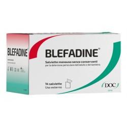 BLEFADINE 14 SALVIETTE MONOUSO PER DETERSIONE