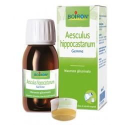 AESCULUS HIPPOCASTANUM MACERATO GLICERICO 60 ML