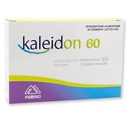 KALEIDON 60 12 BUSTINE
